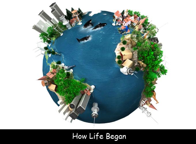 how-life-began